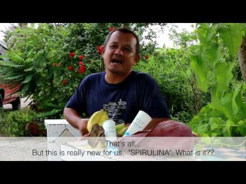 Farm to freezer #1: Whapow Banana Grower กำนันหนุ่ม