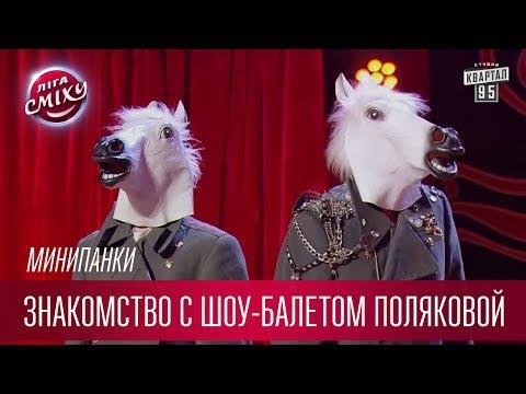 Марина Влади. Владимир или Прерванный полет