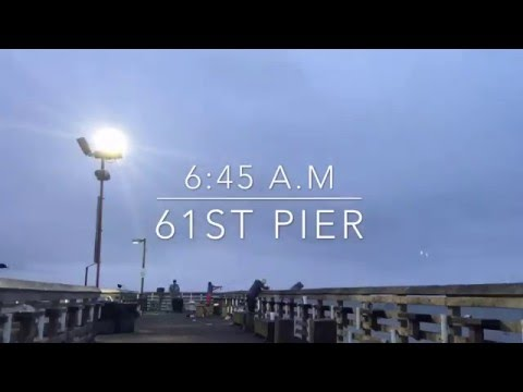 Shark caught at 61st fishing pier from YouTube · High Definition · Duration:  4 minutes 22 seconds  · 221 views · uploaded on 13.06.2014 · uploaded by Maribel Heras