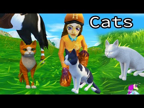 New Pet Cats Update Star Stable Online Horse Game Review Video