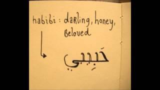 Libyan Music-En7eba En7eba- Waleed el Tellawi