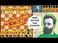 Чигорин расставил шахматную ловушку в дебюте Латышский гамбит!