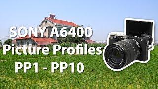 索尼Sony A6400照片参数设置 Slog PP1 - PP10原片输出无后期