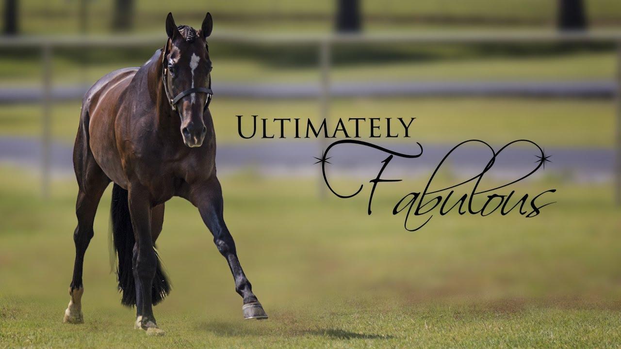 ultimately fabulous ultimately fabulous