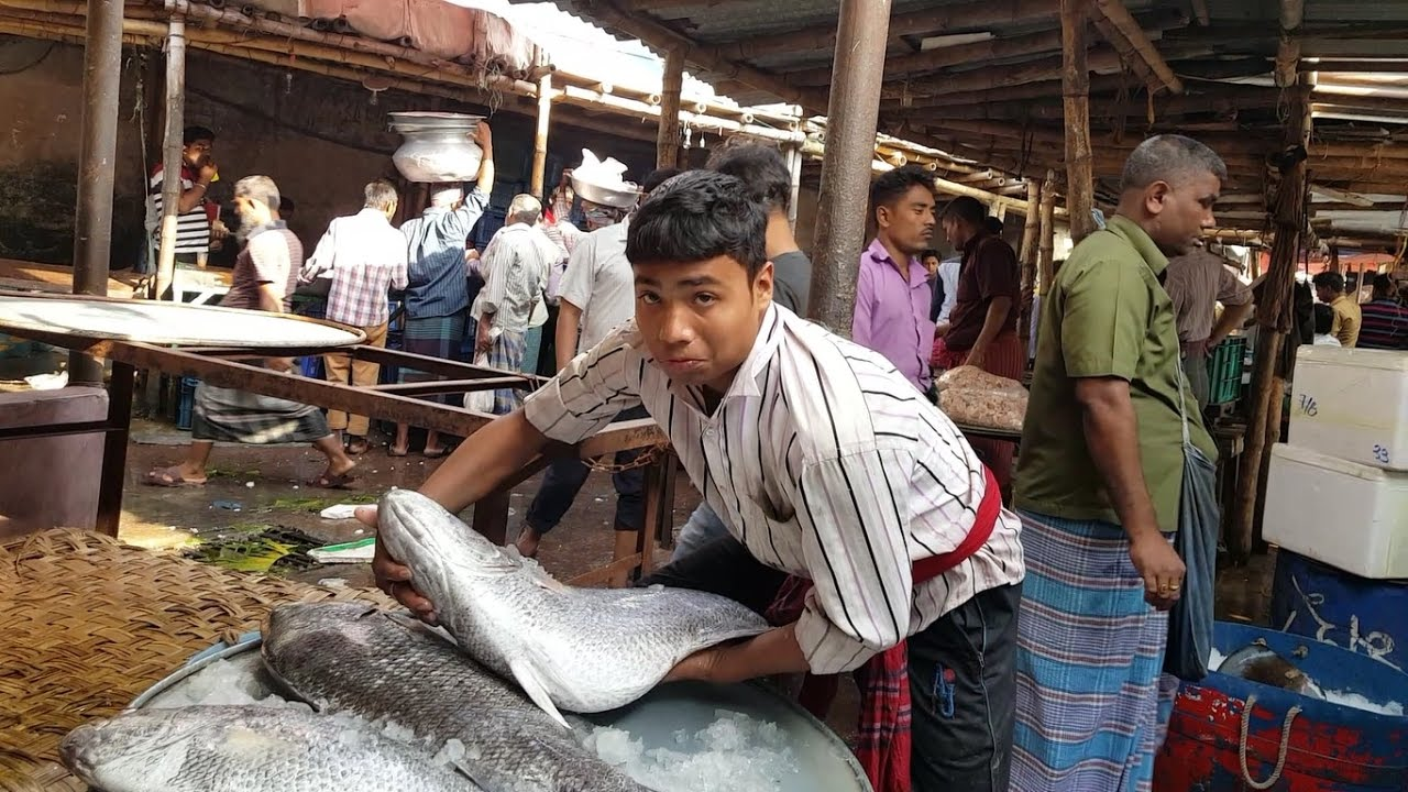 Big village fish market near gazipur bangladesh huge sea for Village fish market