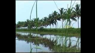 "Malayalam Christian Song ""Aadhiyil Vajanam Undayirunnu"""
