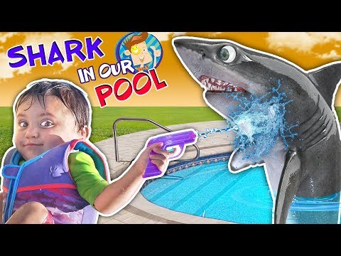 SHARK IN OUR POOL!(FUNnel Vision Skit)