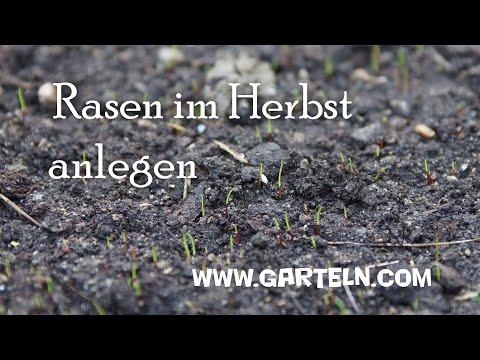 Gut gemocht Rasen im Herbst anlegen bei niedrigen Temperaturen - YouTube XL89