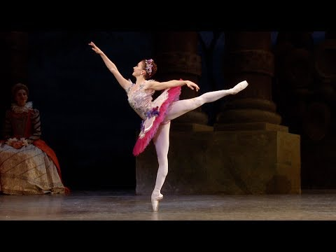 The Sleeping Beauty – Lilac Fairy Variation (Claire Calvert, The Royal Ballet)