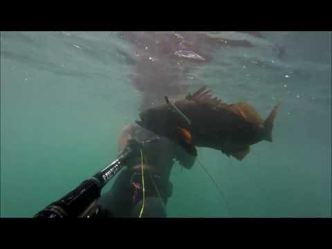 Pesca Submarina en Mollendo.