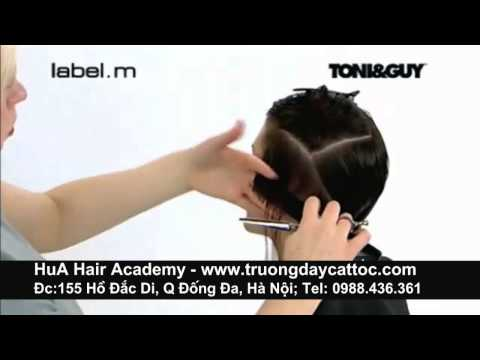 Day nghe cat toc, day tao kieu toc giao trinh Toni&Guy 4d  -www.truongdaycattoc.com