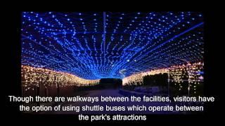 Japan Travel: Fun for all at the Ocean Expo Park, Okinawa Main Island, Okinawa15