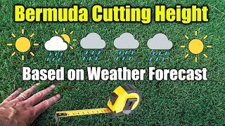 Bermuda Grass Cutting Height Change with Weather Patterns
