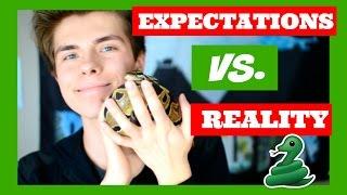 Expectations Vs Reality Having Pet Snake