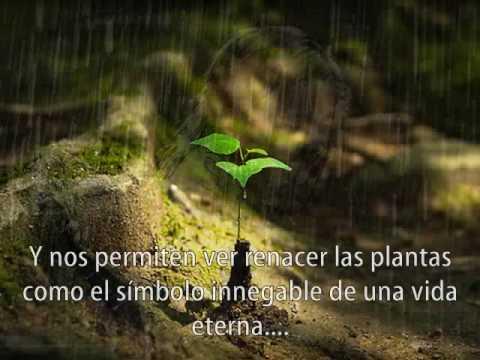 Madre Tierra ...Gracias !!!!