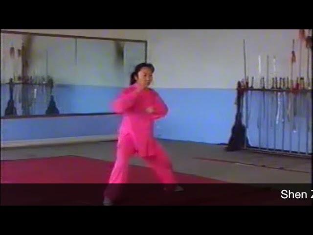 Shen Zhen Jun - - Tai Chi style Chen Laojia Yilu [陈氏太极拳老架 Taijiquan style Chen]
