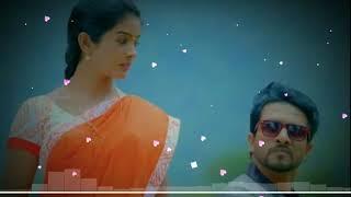 Aranmanai kili serial bgm  | Vijay tv | Arjun | Janu