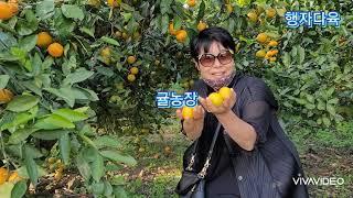 #제주서귀포잠수함 ⚓⛴…