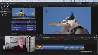 The Difference Between Camera Native, Optimized \u0026 Proxy Media in Final Cut Pro