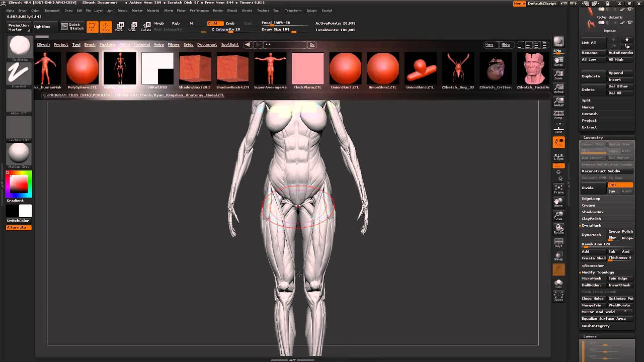 Character Design Tutorial Beginner : Zbrush tutorial beginners starting new characters from