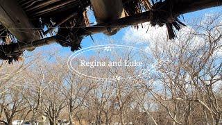 Vlog | 한국의 스톤헨지 Jeju Stone Par…