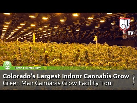 Colorado's Largest Indoor Cannabis Grow! Green Man Grow Facility Tour - Smokers Guide Colorado