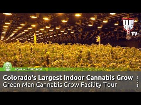 Colorado's Largest Indoor Cannabis Grow! Green Man Grow Facility Tour - Smokers Guide Colorado