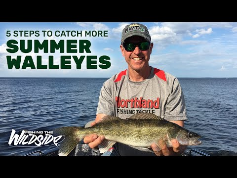 5 Steps To Catch More Summer Walleyes