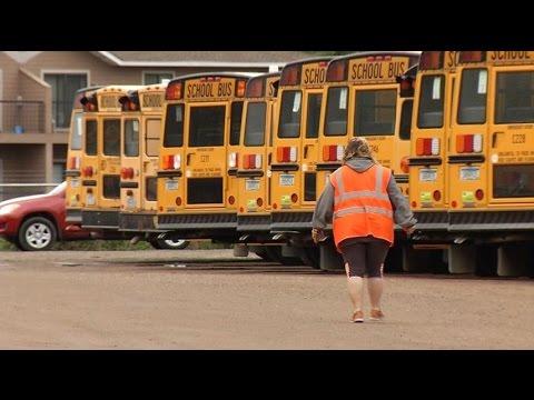 Bus companies run into driver shortage