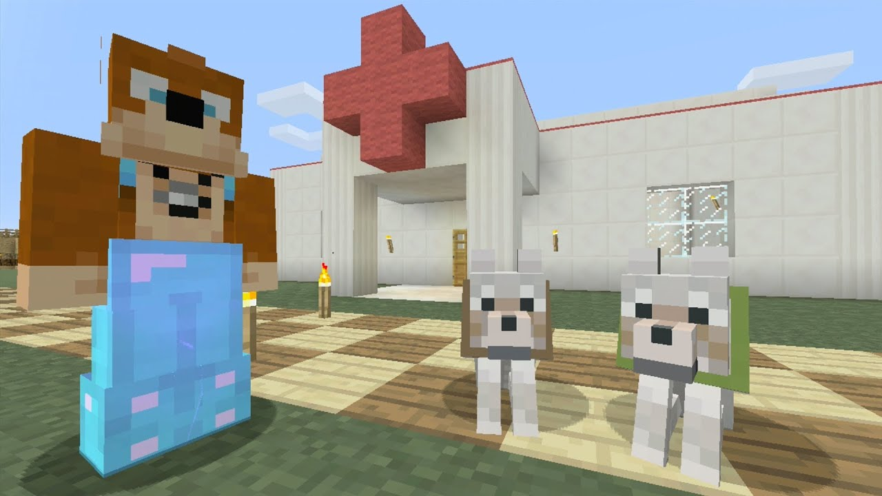 Stampy Cat Pet Vet