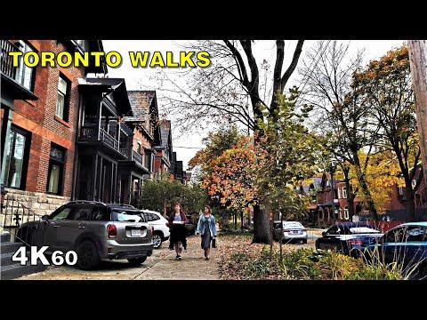 Madison Avenue In The Fall [4K Toronto Walk]