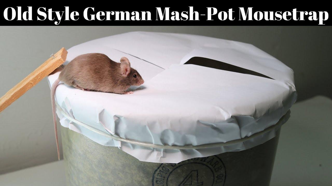 Mash Deutsch