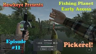 Fishing Planet - Episode #11: Pickerel at Pike Challenge!