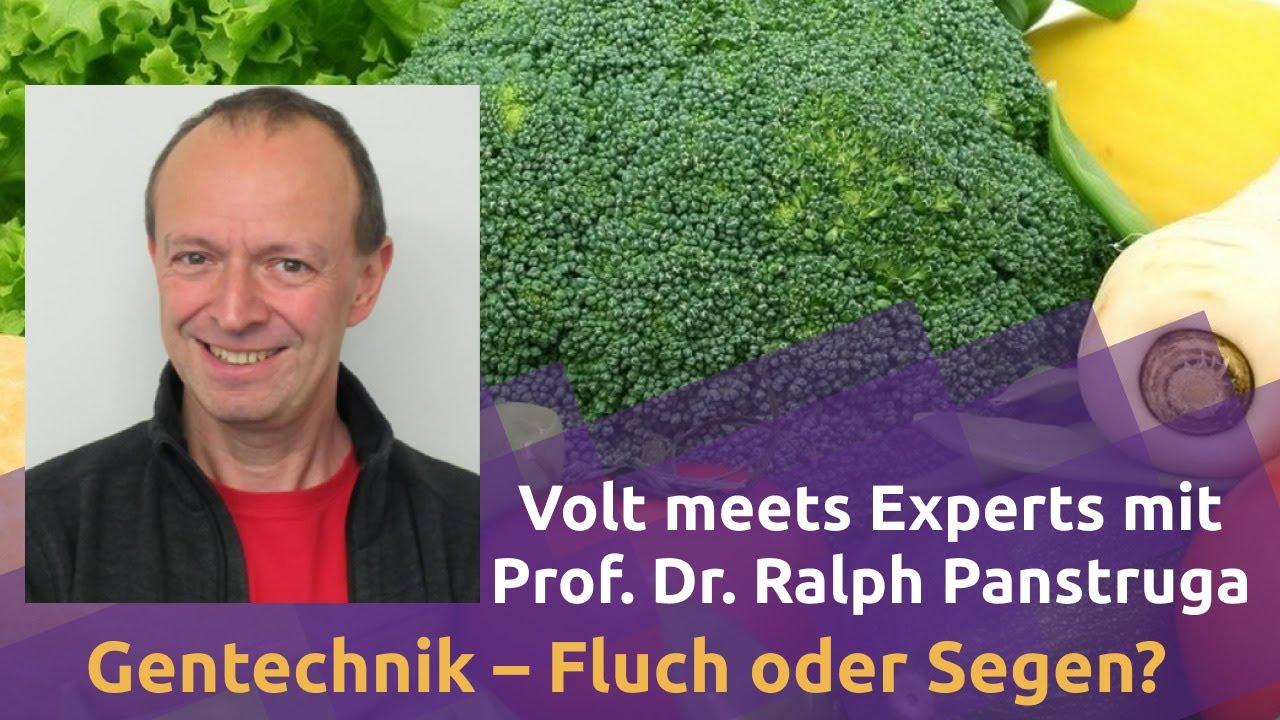 YouTube: Gentechnik – Fluch oder Segen? mit Prof. Dr. Ralph Panstruga | Volt meets Experts