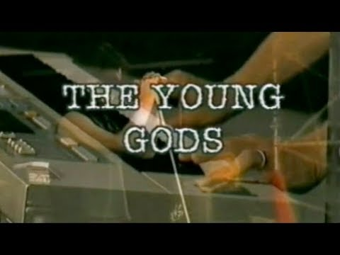 The Young Gods - Full Live Paléo Festival 2001