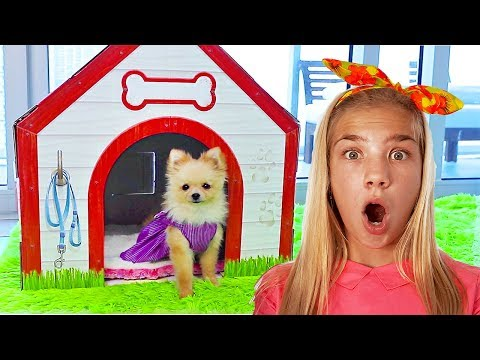 Maggie build Puppy Dog House for Shanty