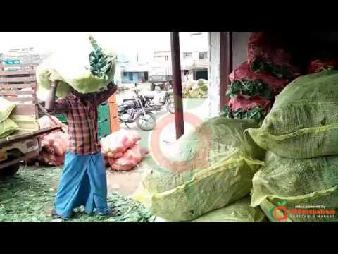 Packing of Export Quality Cauliflower - Oddanchatram Vegetable Market