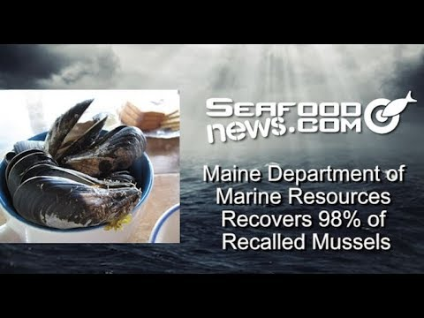 Maine Department of Marine Resources Recovers 98% of Recalled Mussels