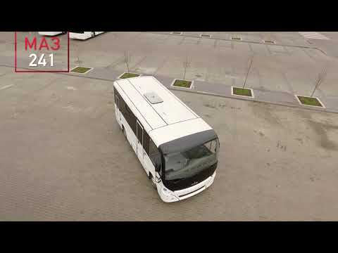Автобус МАЗ 241