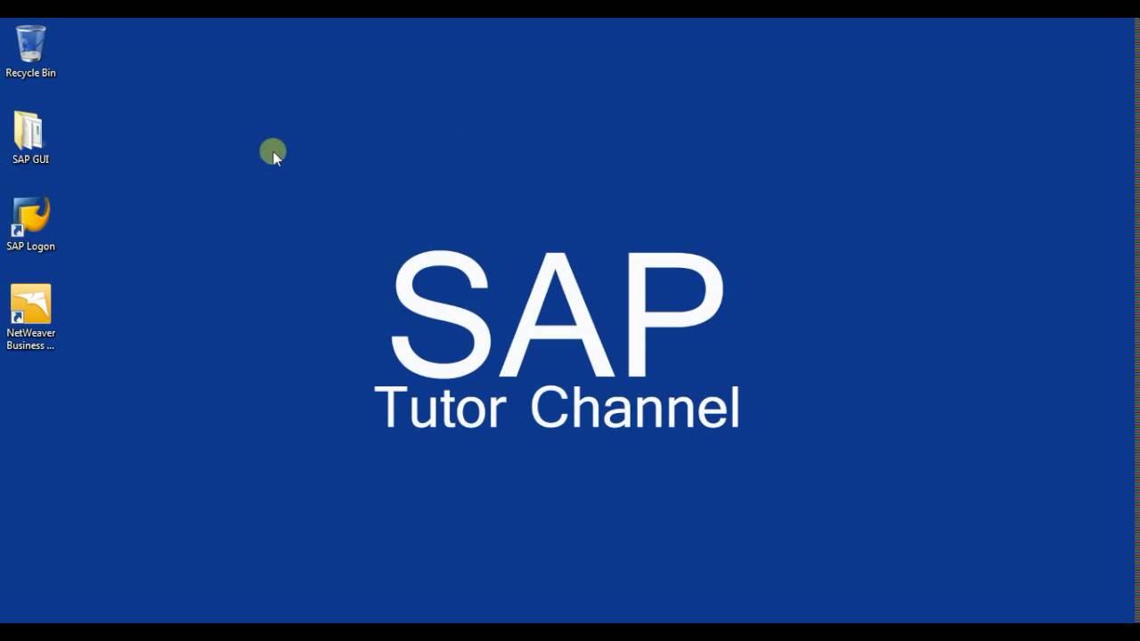 Install SAP GUI