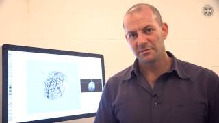 Dr David Carmel: What is Consciousness (Philosophy and the Sciences, Wk6 pt2) Thumbnail