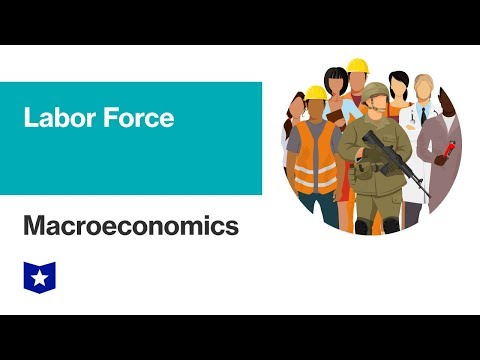 Labor Force | Macroeconomics