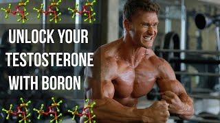 How to Boost Free Testosterone with Boron: Thomas DeLauer