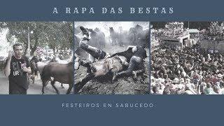 A Rapa Das Bestas de Sabucedo - Reportaje thumbnail