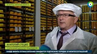 За что в России забраковали белорусскую молочку? - МИР24
