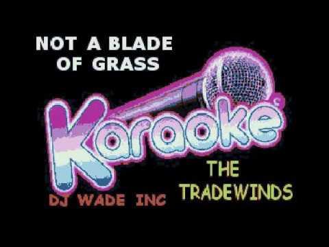 DJ 1163 THE TRADEWINDS   NOT A BLADE OF GRASS DEMO