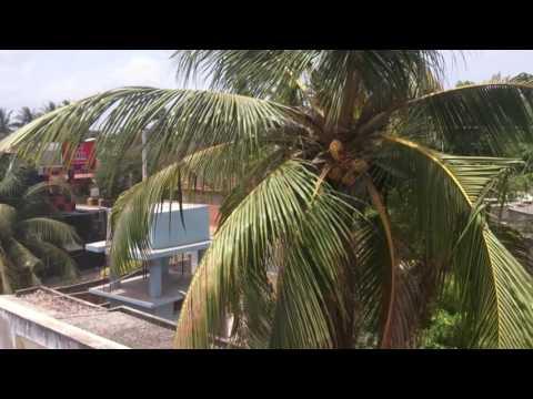 Around the World - Sri Lanka adventure, Life and Culture, Colombo, Jaffna, Kandy