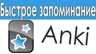 как пользоваться программой Anki
