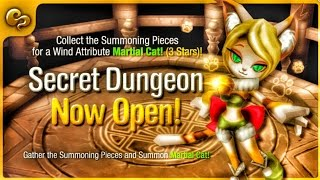 Wind Martial Cat Secret Dungeon - Stage 10 Cleared - Summoners War