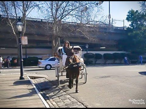 Horse Drawn Carriage Ride At Old Sacramento - Caij Tsheb Nees Pheej Yig Heev